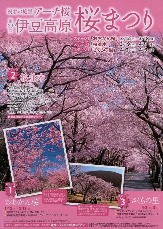 平成28年伊豆高原桜まつり